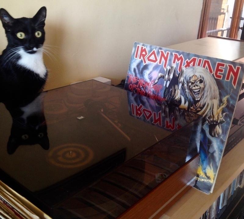 Omalé écoute Iron Maiden