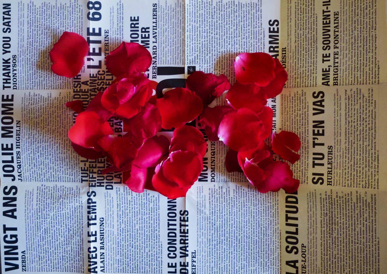 Des roses pour Léo Ferré