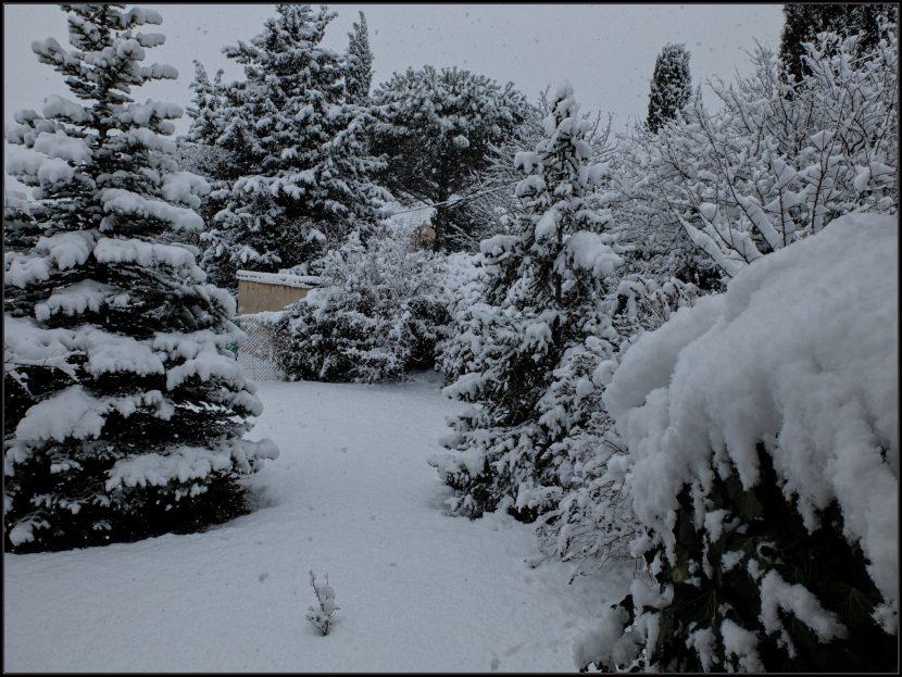 Le jardin, à Venelles, sous la neige, matin du 2 décembre 2017