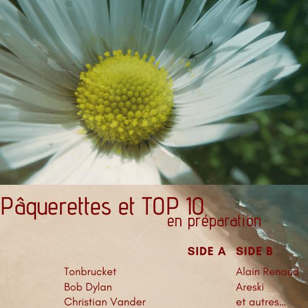 Pâquerettes et futur Top10 de l'année 2018.