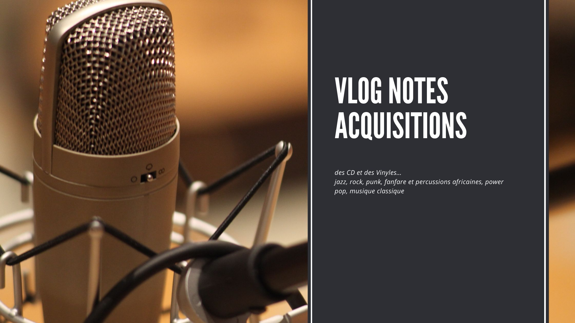 Un Vlog Notes acquisitions de CD et Vinyles