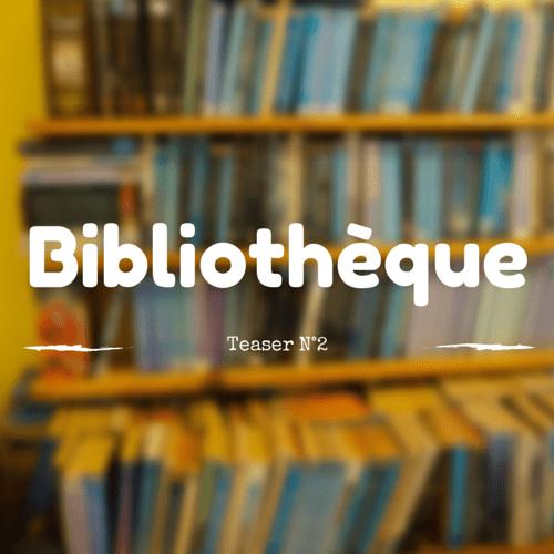 Teaser 2 : ranger la bibliothèque