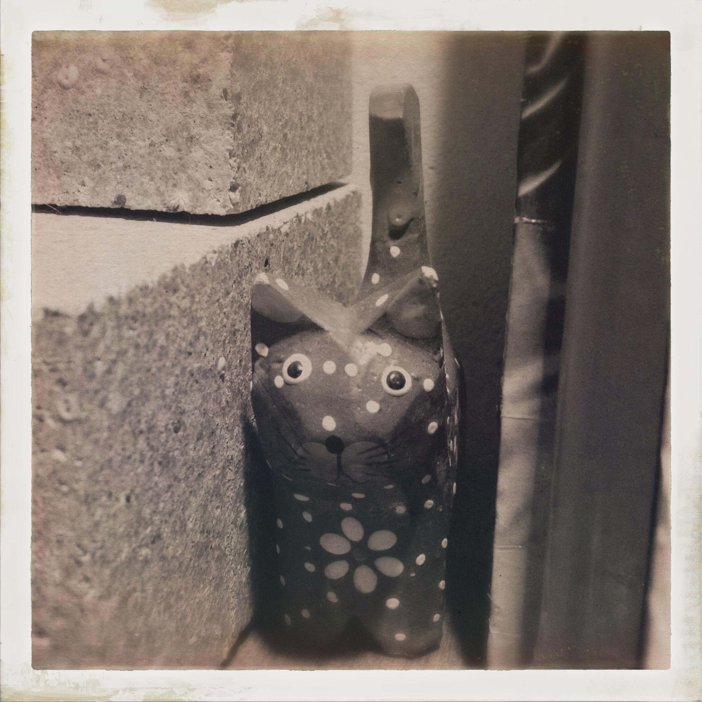 [Un jour, une Photo] Le retour du chat !