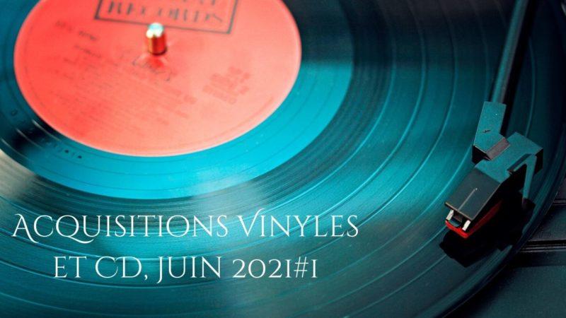 Vide-greniers du Jour et Vlog Notes Acquisitions.